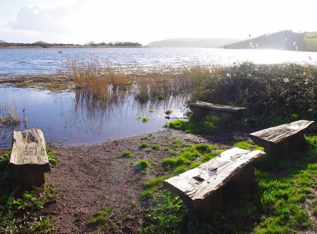 February – walk round Slapton Ley National Nature Reserve