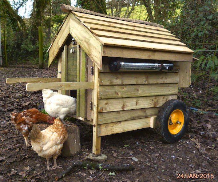Hens on wheels …