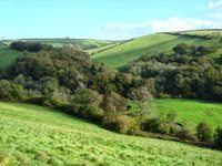 Slow Nature Wild Words … Fri 15 Nov – Sun 17 Nov 2013…  A rural writing retreat